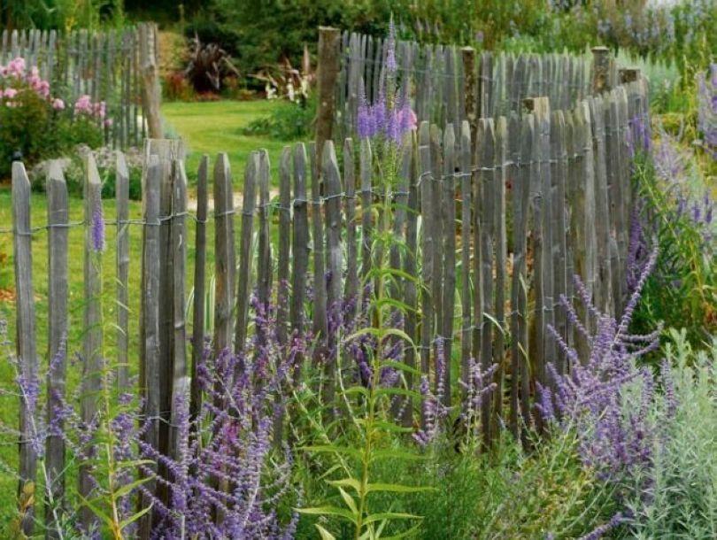 clôture ganivelle nantes   jardin   Pinterest   Nantes, Paysagiste ...