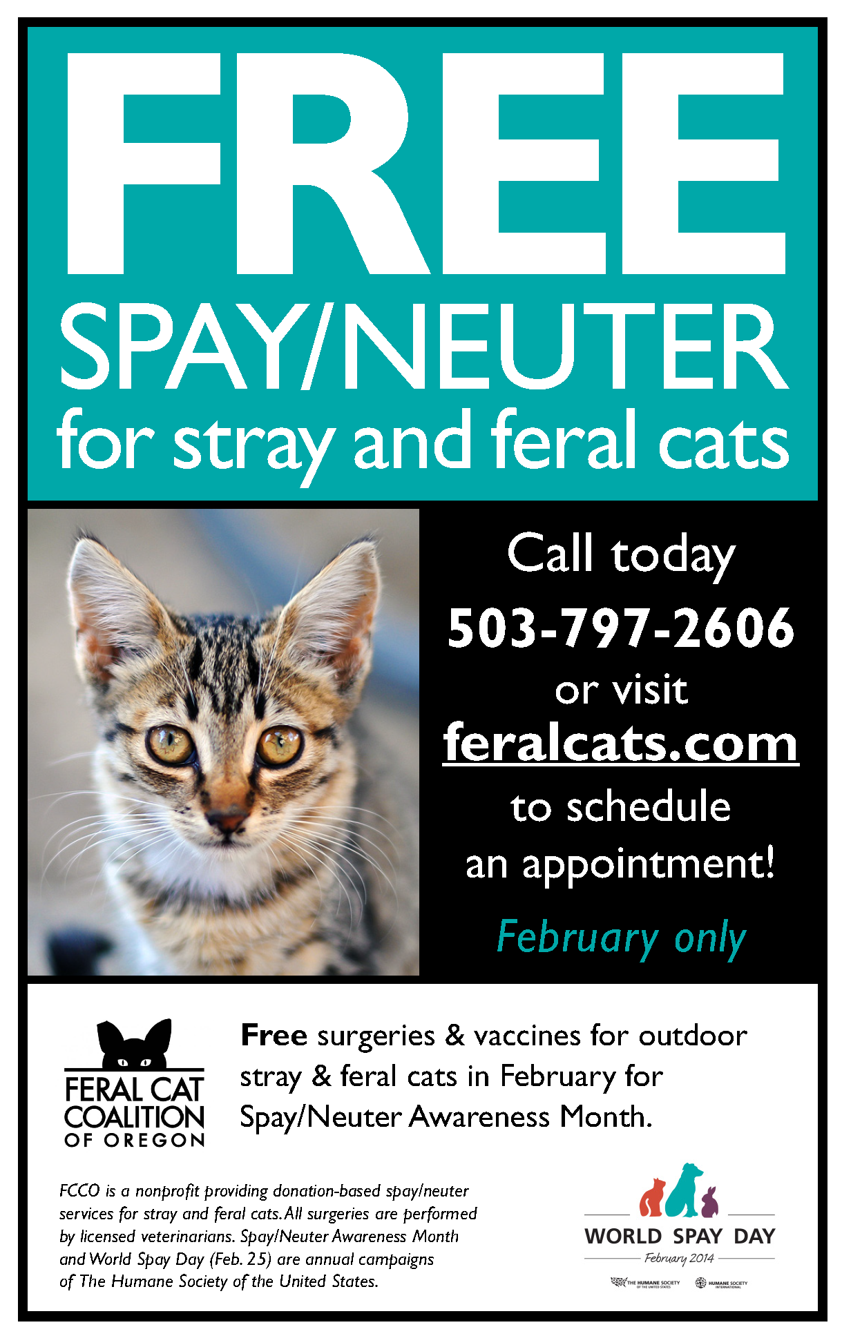FREE spay/neuter special this February in honor of Spay
