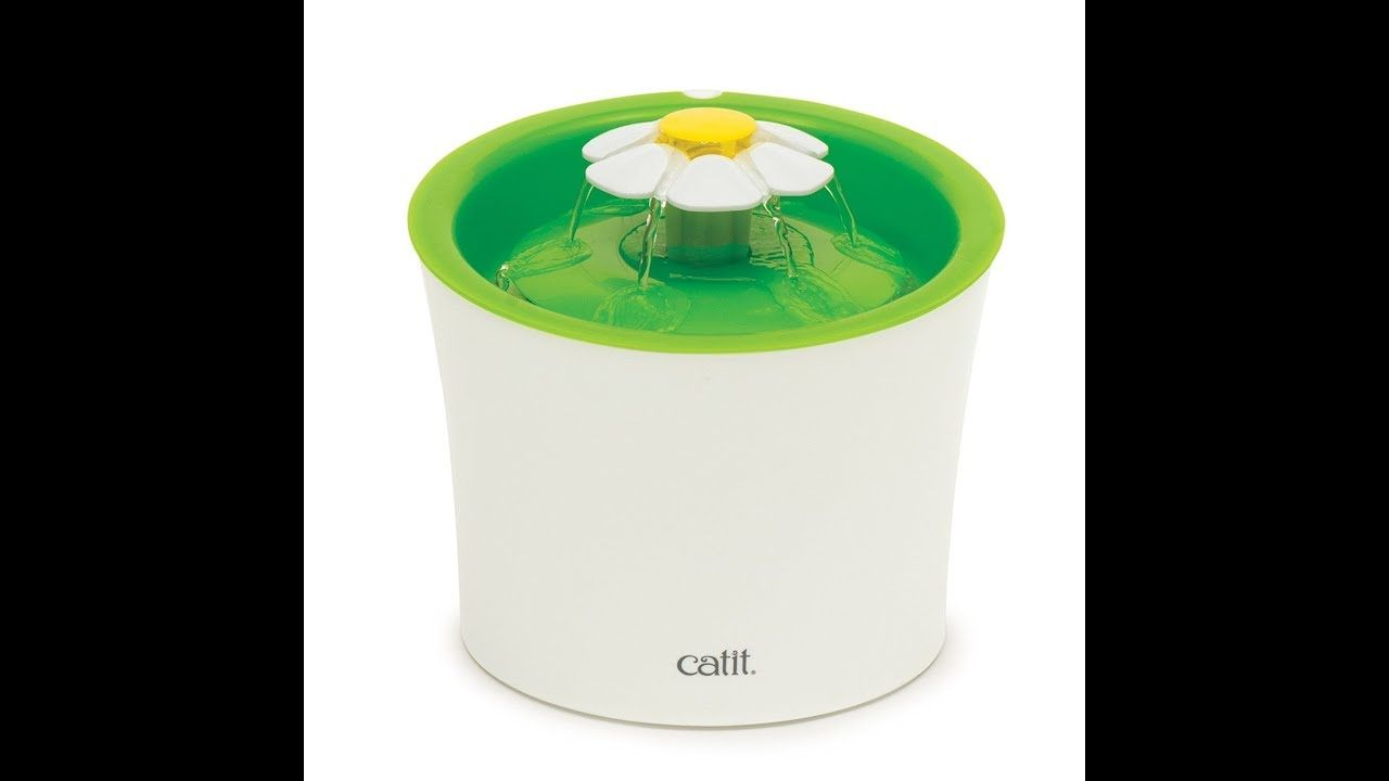 Catit water flower fountain review 3 in 1 cat drinking