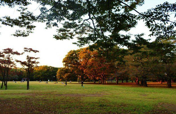 [New] Yoyogi Park: Harajukus Secret Sanctuary https://t.co/hbHvzYKxnf #MATCHA https://t.co/lcFeTdF3X7