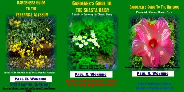 Gardeners guide to the full sun perennial flower garden full sun gardeners guide to the full sun perennial flower garden mightylinksfo