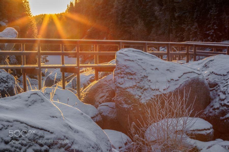 winter sun passage by geertweggen via http://ift.tt/2hUIM4k