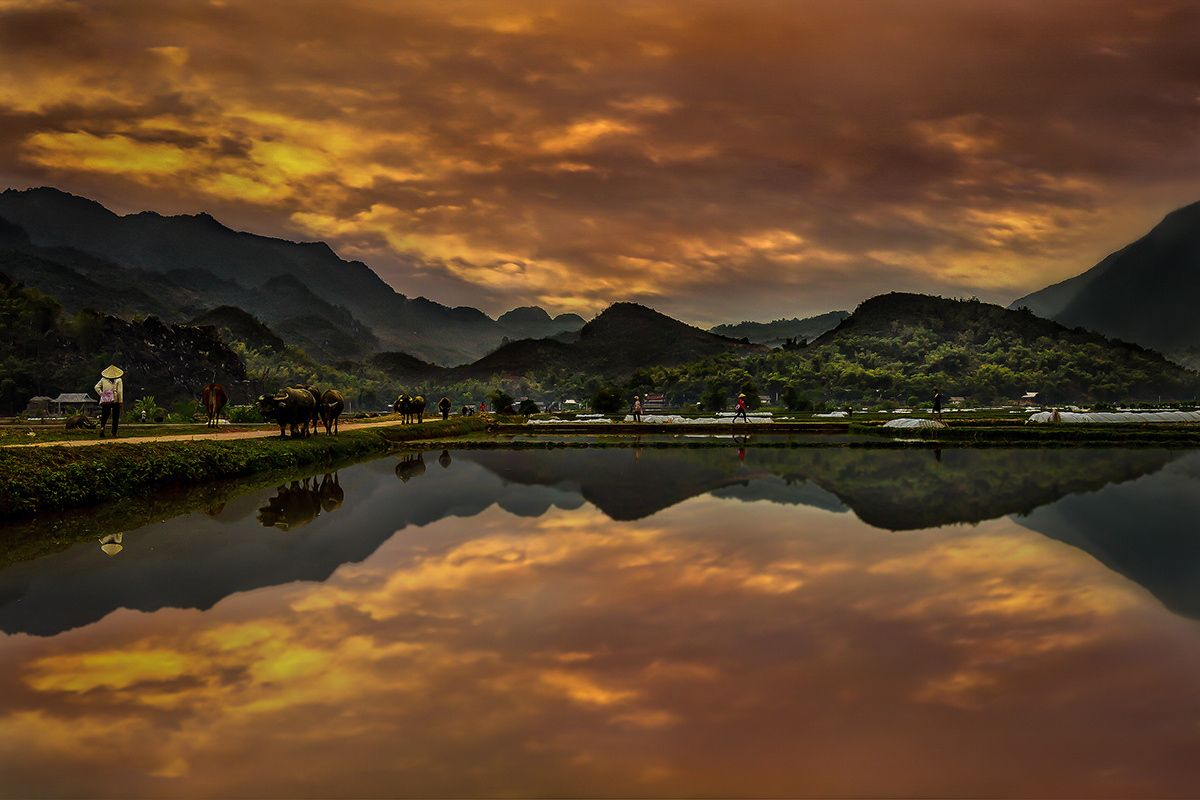 Symbiotic Reflection of Life by Marius Moragues on 500px