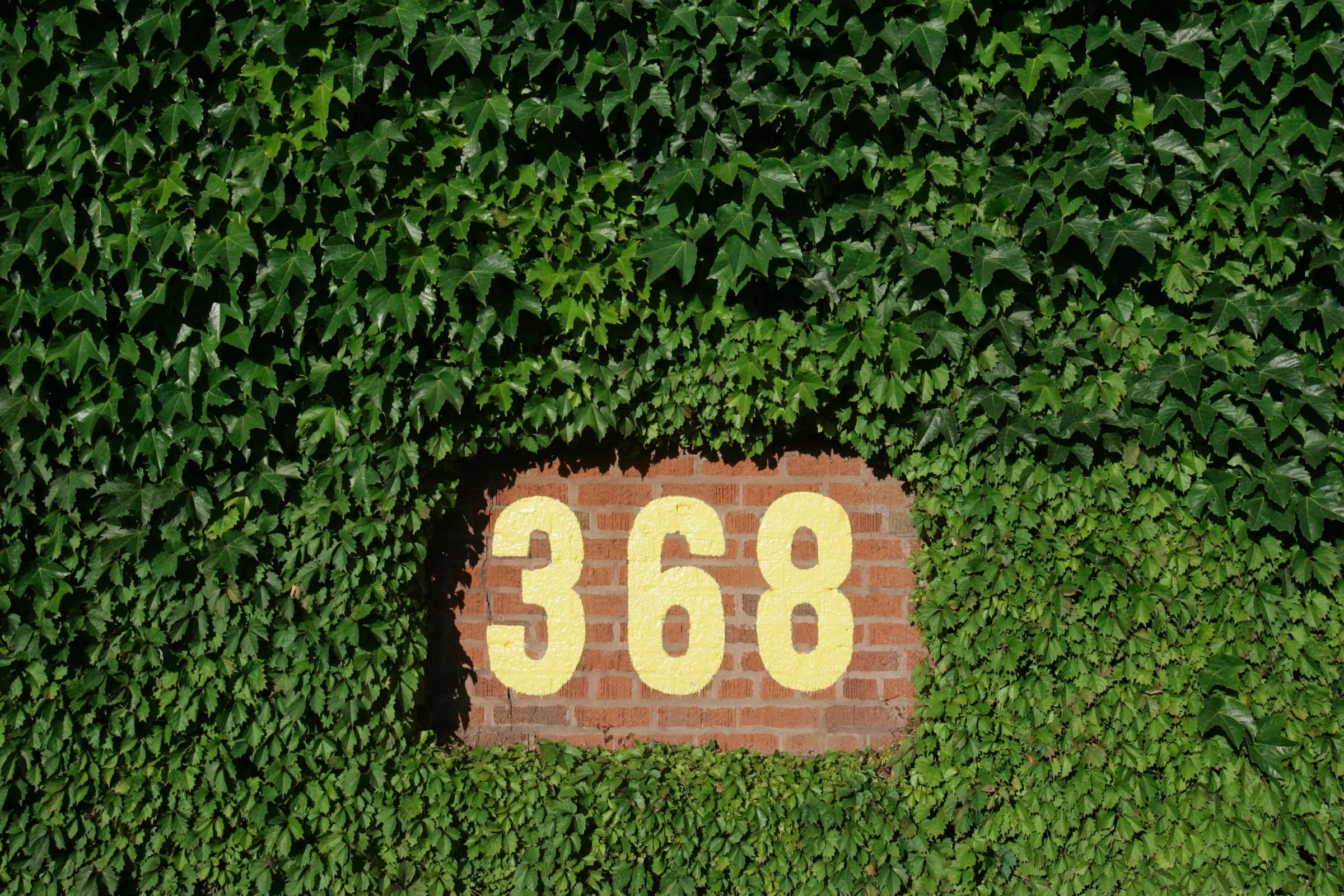 368 Sign Wrigley Field Ivy Desktop Wallpaper Background Field