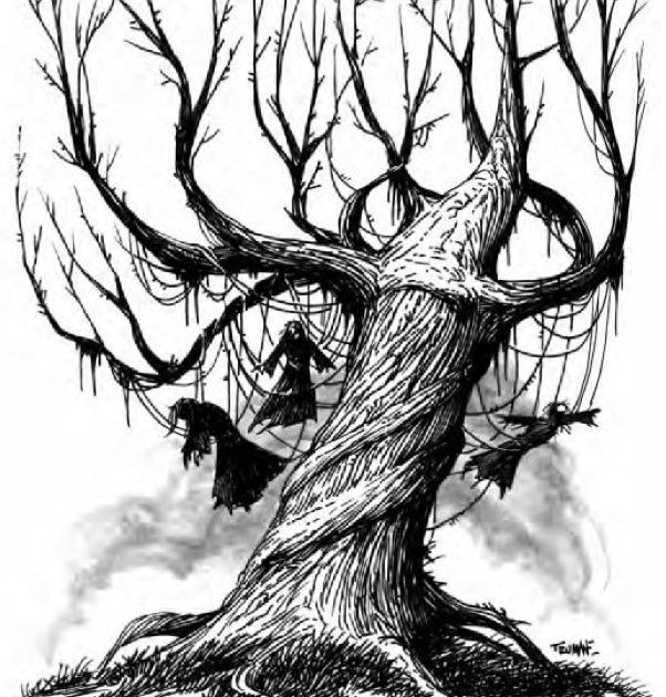 Gallows Tree Pictures To Draw Old Trees Illustration Art