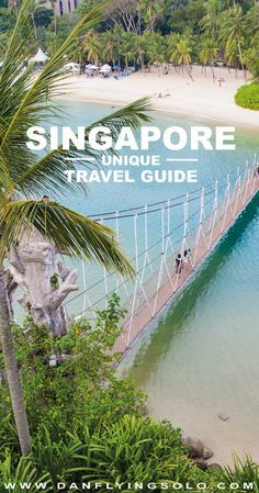With the 'worlds best airport' people are lining up to pass through, but I say stop stopovers and discover how diverse this garden city can be! A Singapore travel guide from high rises to wildlife run islands… | #travel #traveltips #singapore