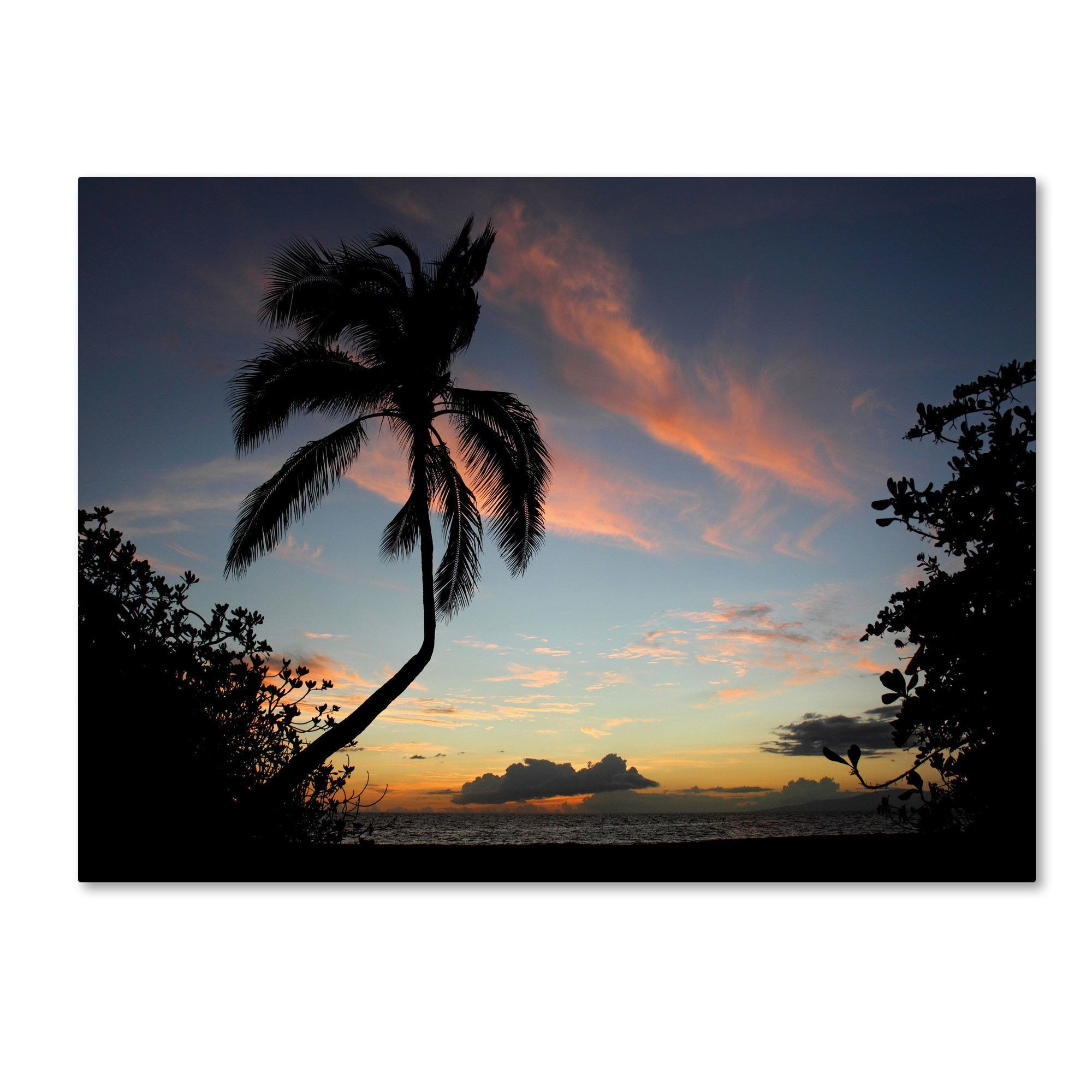 Tropical sunsetu by pierre leclerc photographic print on canvas