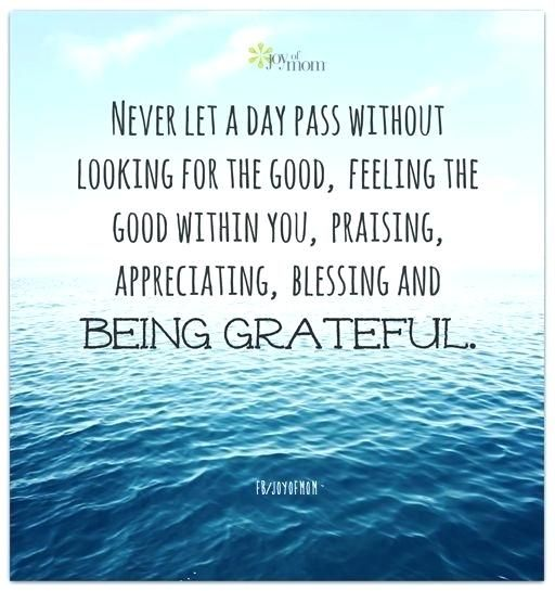 Quotes About Being Grateful Inspiration Feeling Blessed And Thankful Quotes Gratitude Needed To Read This