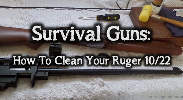 Survival Guns How To Clean Your Ruger 10 22 Skills Guide