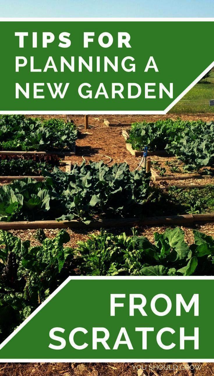 #among #Beginners #Books #gardening #gardening for ...