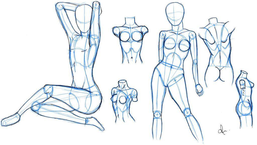 Female Anatomy 1 By Rasikacart Drawing Pinterest Drawings