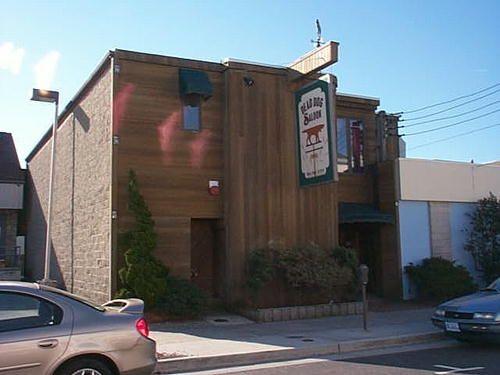 Dead Dog Saloon Sea Isle City, NJ - Food, Restaurants, Bars ...