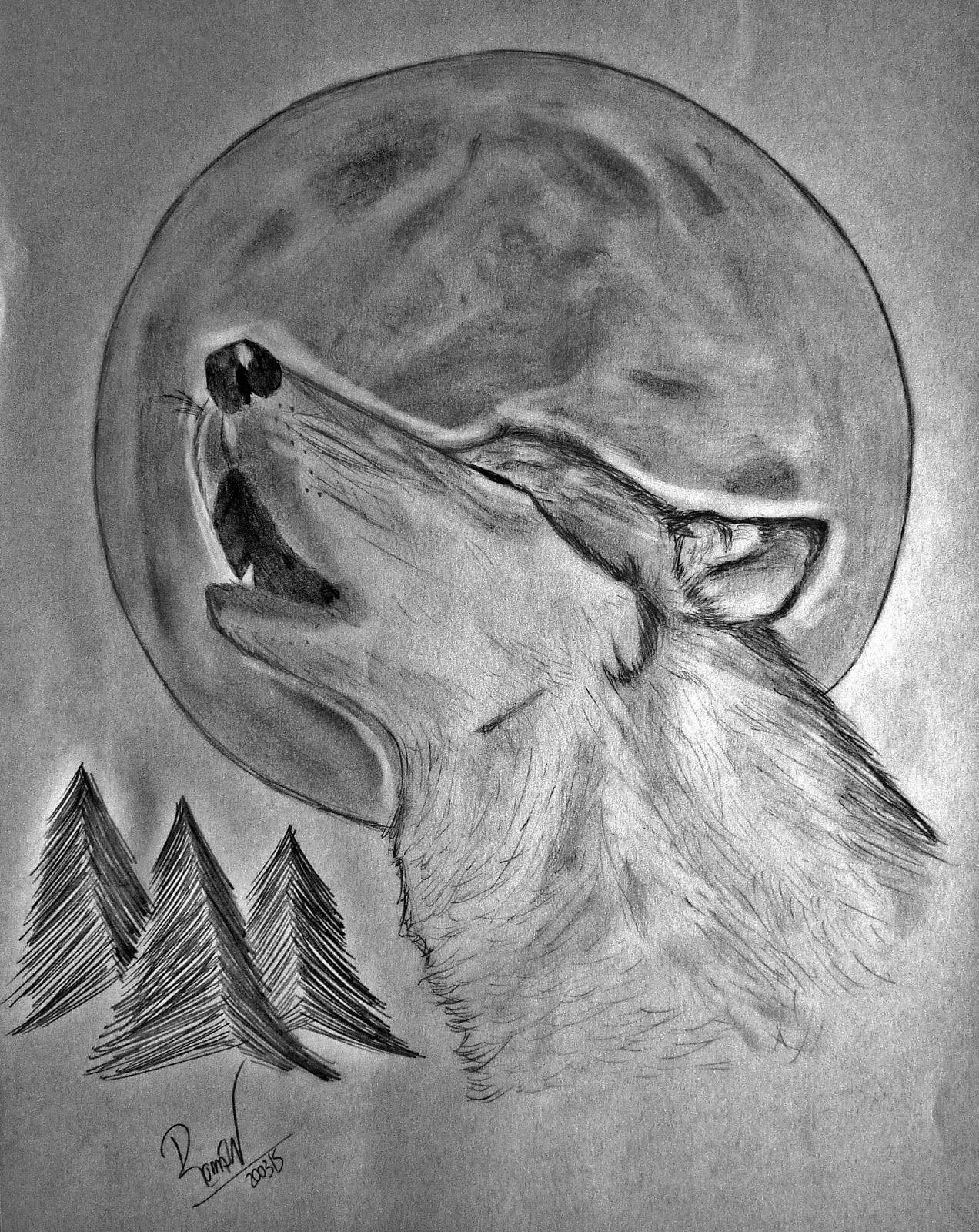 Resultado de imagen para lobos aullando dibujos a lapiz  DIBUJO