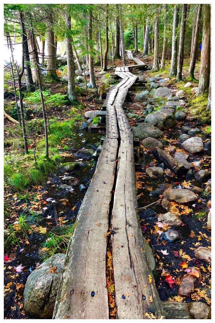 Best Easy Hikes In Acadia National Park