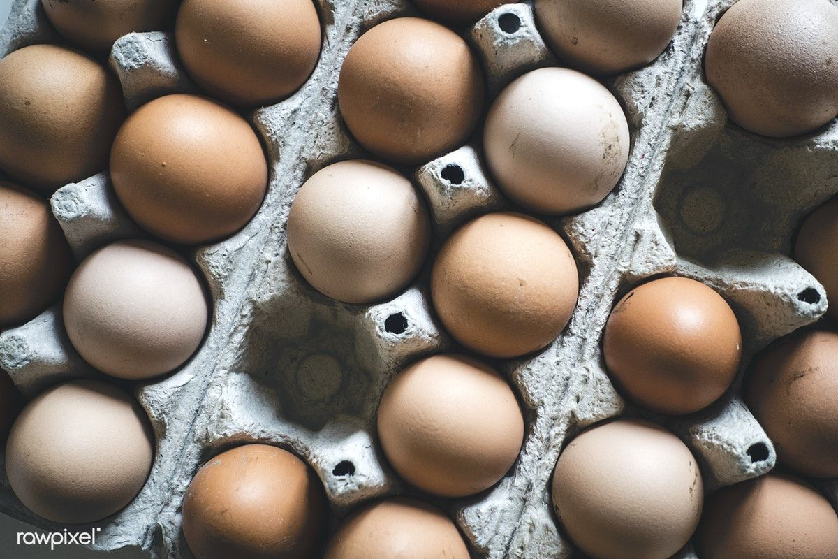 Eggs In A Carton Free Image By Rawpixel Com