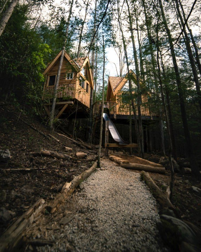 2. Tradewinds Treehouse in 2020 Kentucky vacation, Tree