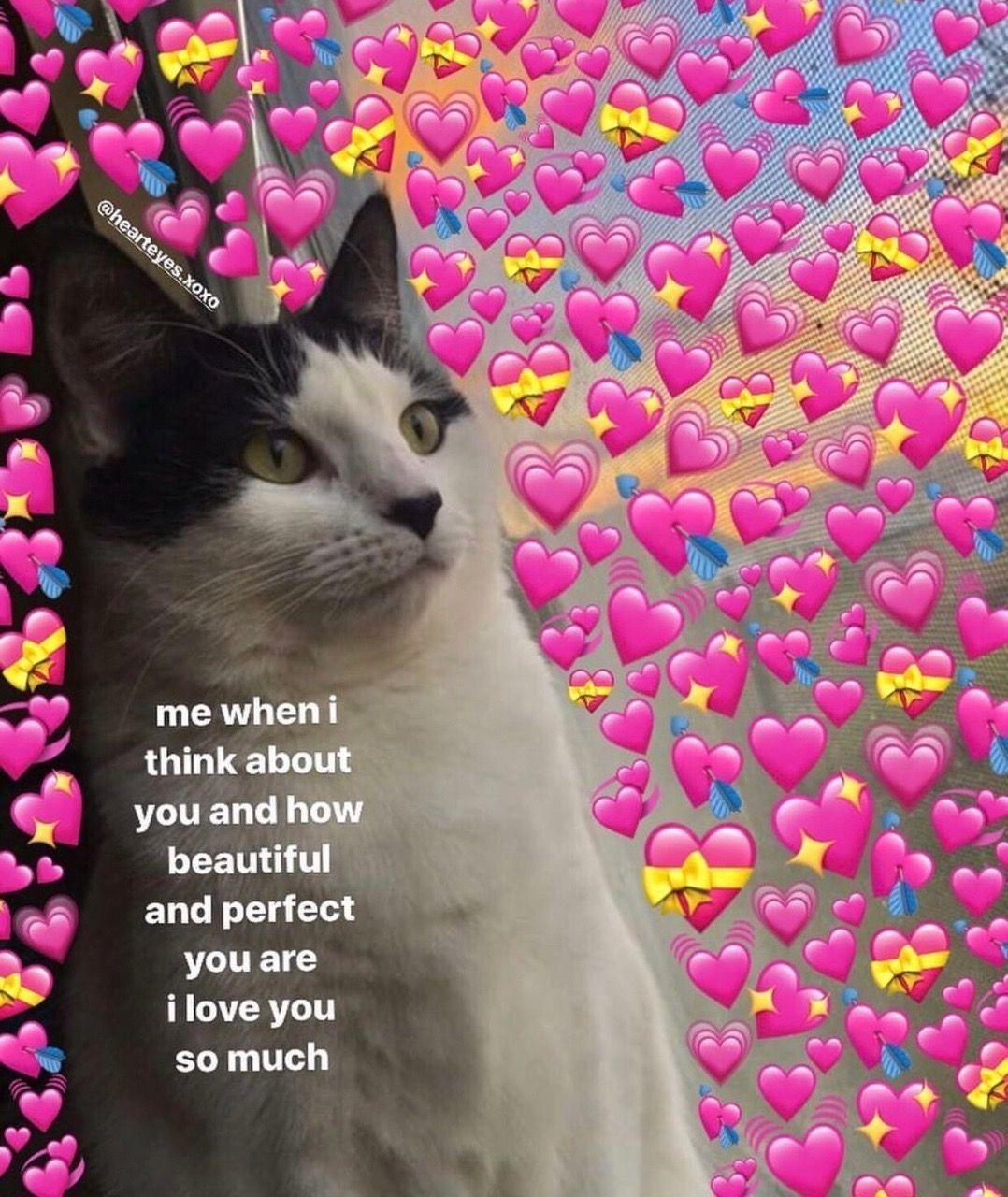 qxeennn Cute love memes, Love memes, Cute memes