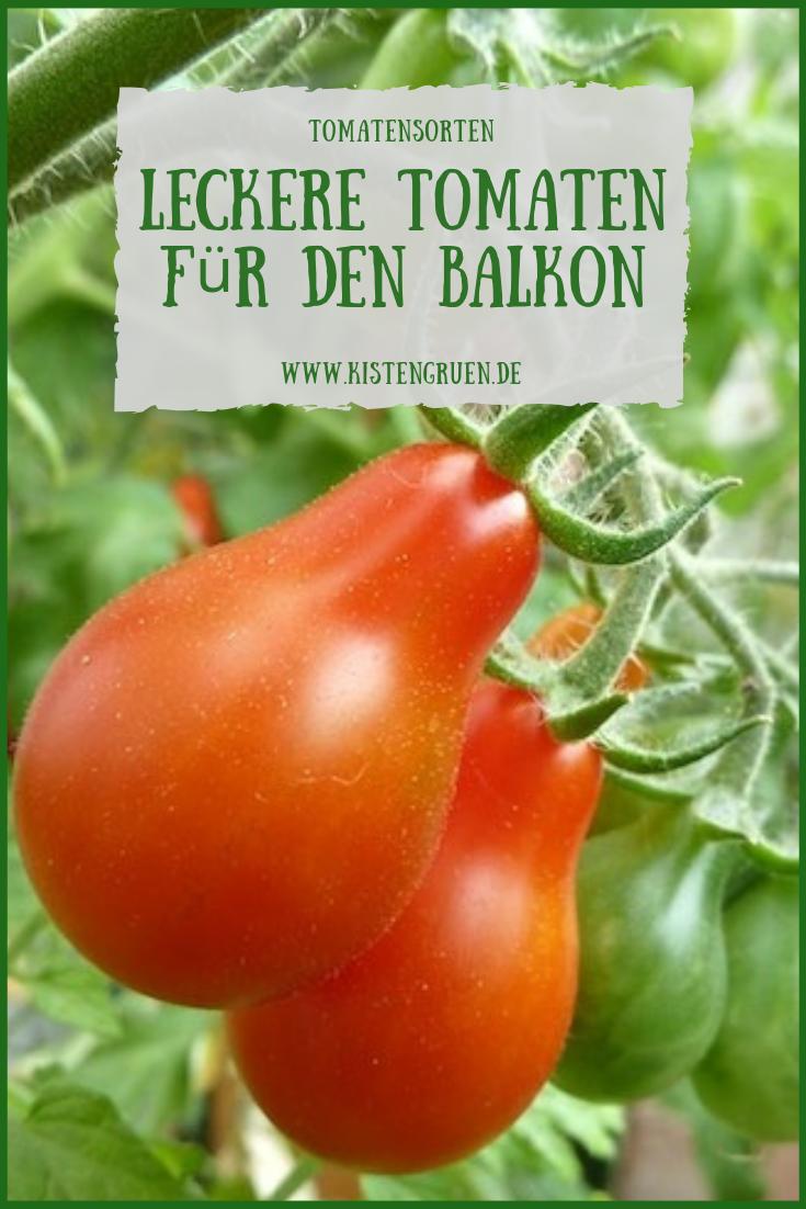 So Lecker Sind Die Tomatensorten Im Balkon Garten 2019 Tomaten Sorten Tomatensorten Tomaten Anbauen