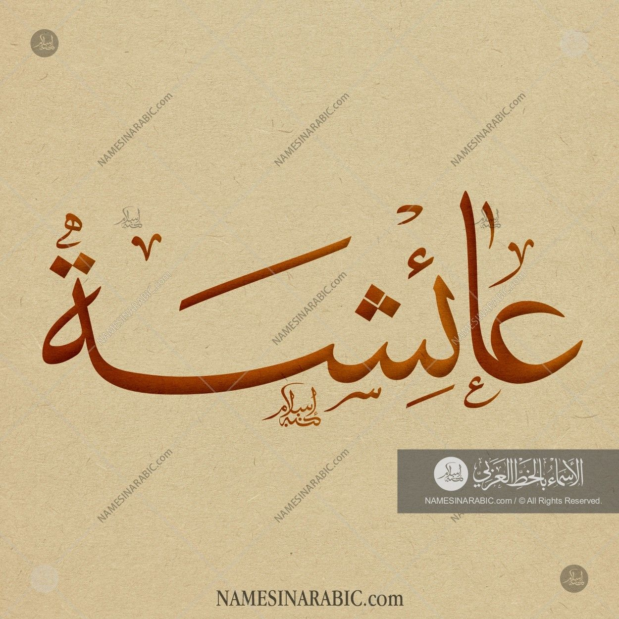 Aisha – عائشة / Names in Arabic Calligraphy | Name# 5281 | arabic in