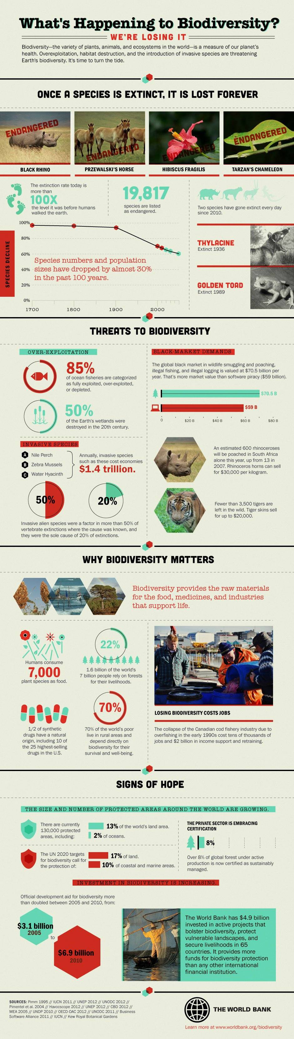SavingSpecies » Top 10 Biodiversity Conservation Infographics - Infographic showing loss of biodiversity
