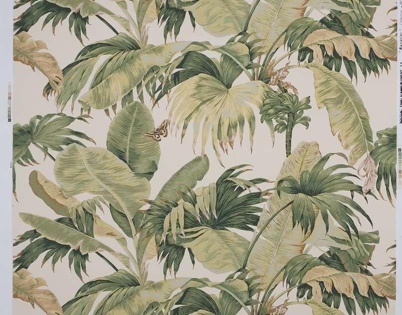 boussac papier peint bananier ecru green ai papier peint v g tal pinterest bananier. Black Bedroom Furniture Sets. Home Design Ideas