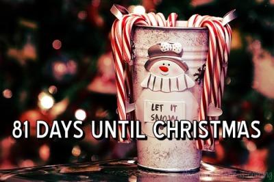 81 days till christmas Google Search Days till