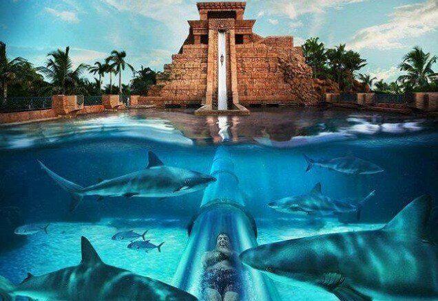 Earth Pics The Mayan Temple Water Slide Bahamas Thats In Dubai