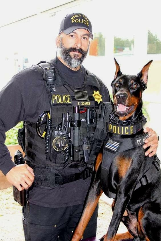 Police K 9 Doberman With Images Dog Soldiers Police Dogs