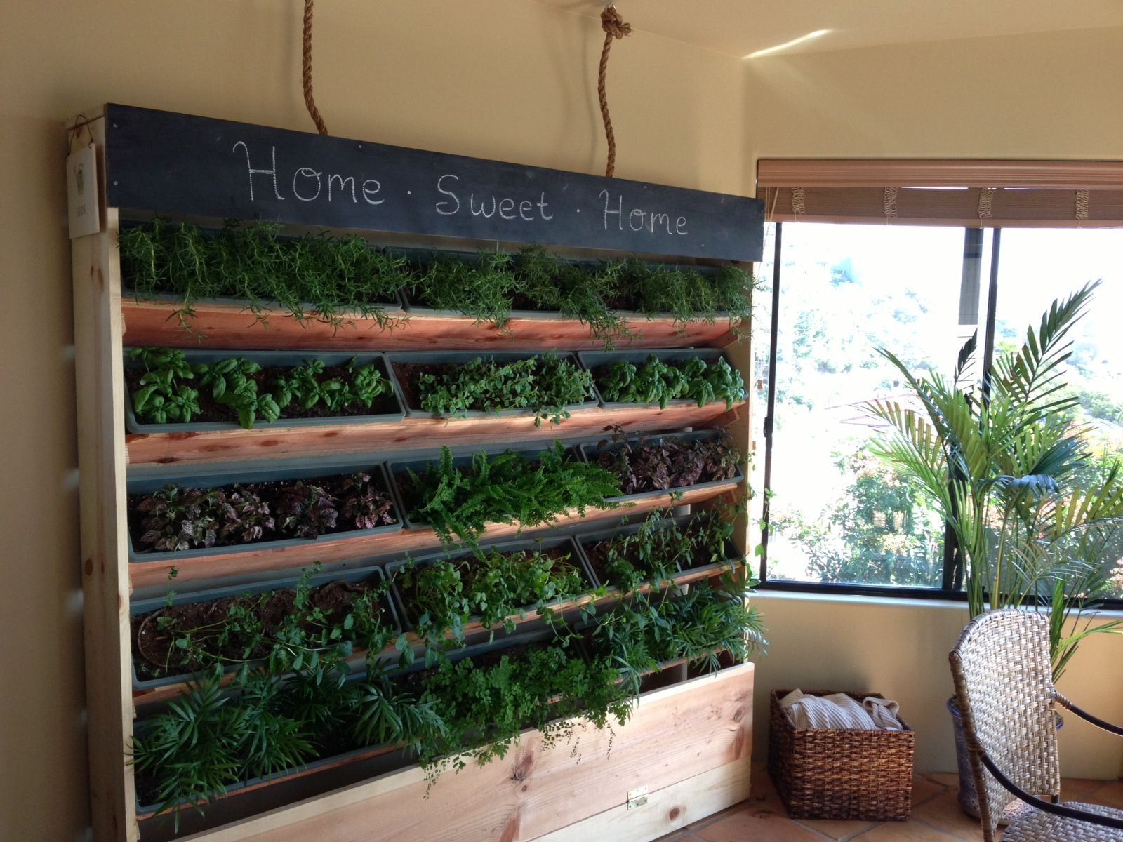 Herb Wall Diy 6 Foot Indoor Vertical Garden Diy Pinterest Indoor