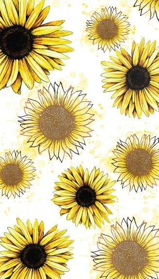 Sunflower Obsession | The Creative Soul in 2019 | Sunflower wallpaper, Sunflowers background, Locked wallpaper