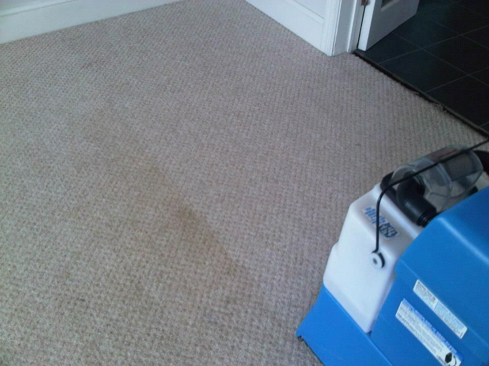 Carpet Cleaning Results using the Rug Doctor Mighty Pro