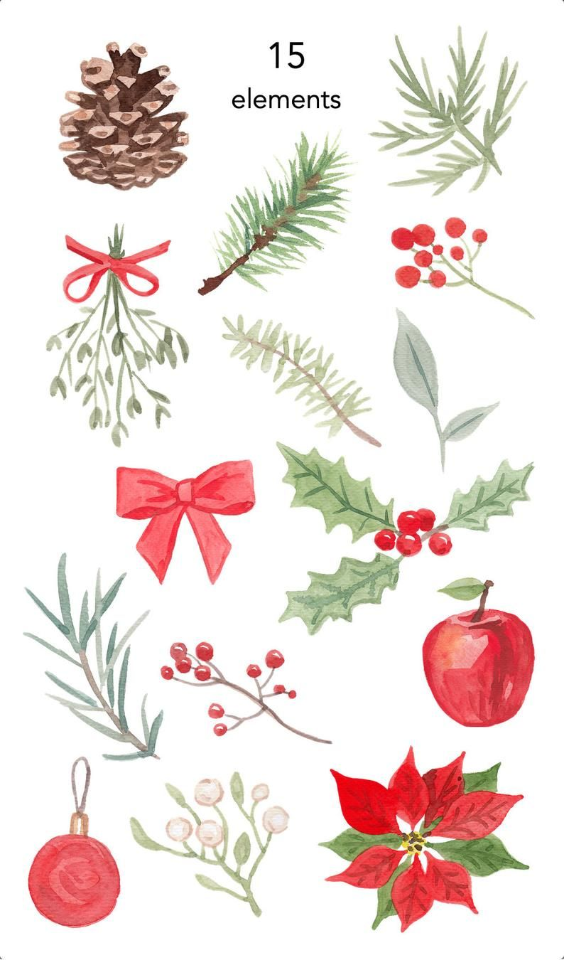Watercolor Clipart Christmas Clipart Greens Clipart Leaves Holly Mistletoe Commercial Use Graphics Png Clip Art Holiday Cone Apple Watercolor Christmas Cards Christmas Prints Christmas Drawing