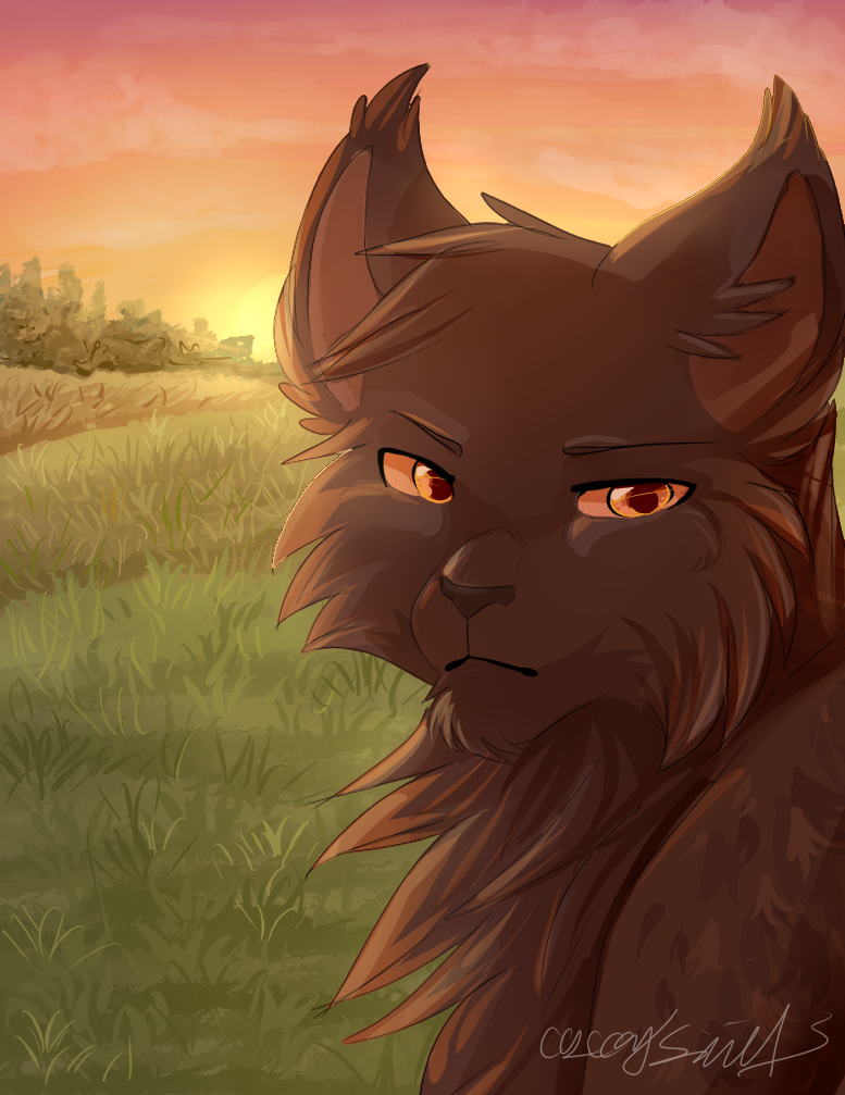 I Will Wait Forever Warrior Cats