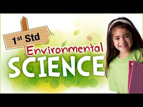 EVS For Class 1 | Learn Science For Kids | Environmental Science