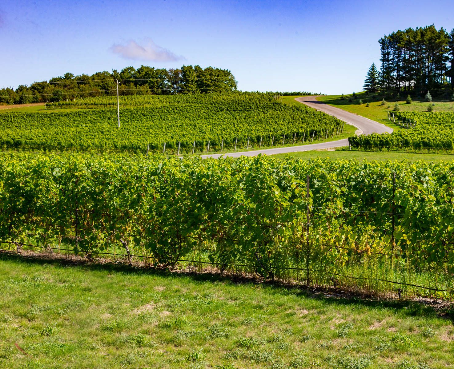 Home Leelanau Peninsula Wine Trail Travel In 2019 Trail Places To Go Traverse City