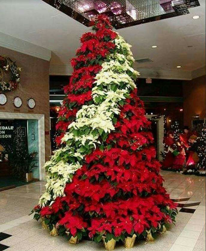 Christmas Tree Made From Poinsettias Church Christmas Decorations Christmas Flowers Holiday Tree