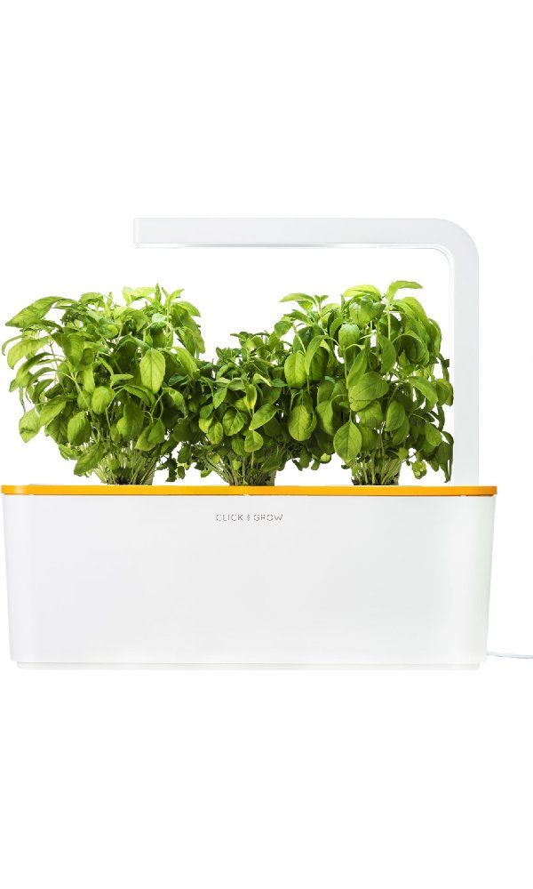 Amazon Com Hot Finds Herb Garden Kit Smart Garden 400 x 300