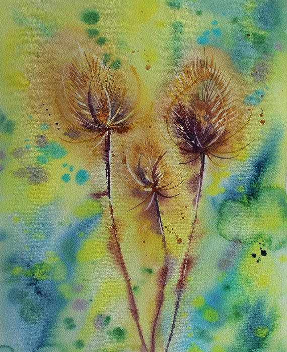 SALE Original watercolour painting of teasels by PenstoneArt