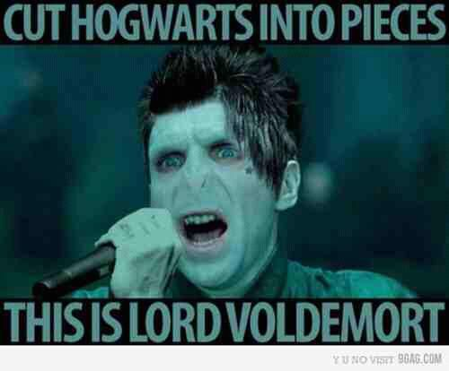 Funny Rock Music Meme : If you like rock music and harry potter you might get this but