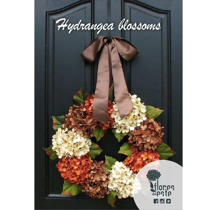 #Hydrangea blossoms make your home feel perfect for #fall  #FDE #Colombia #seasons