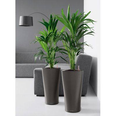 Indoor Decorative Plant Pots