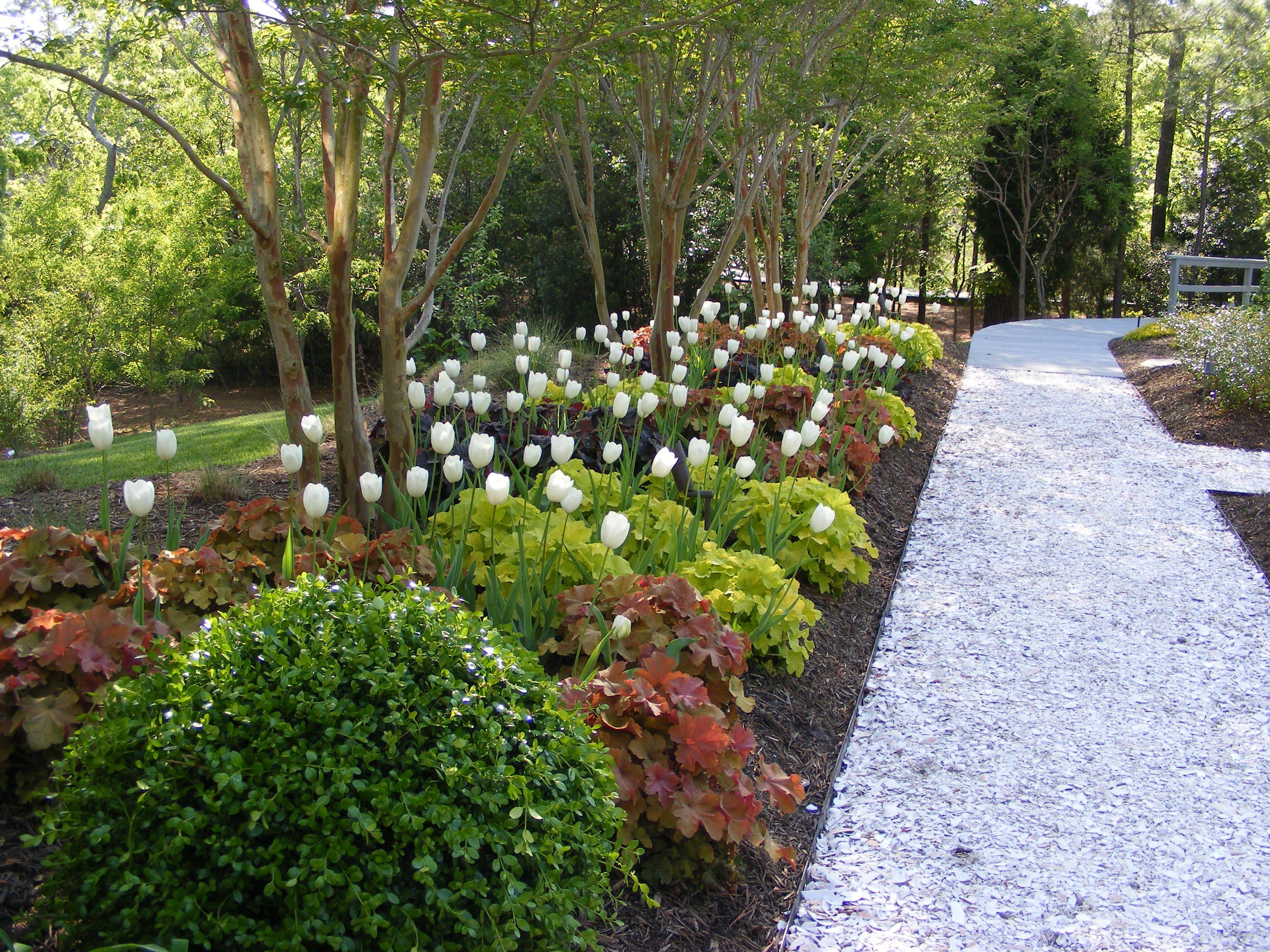 Creative environments landscape co edible gardens - Garden Path Created With Oyster Shells