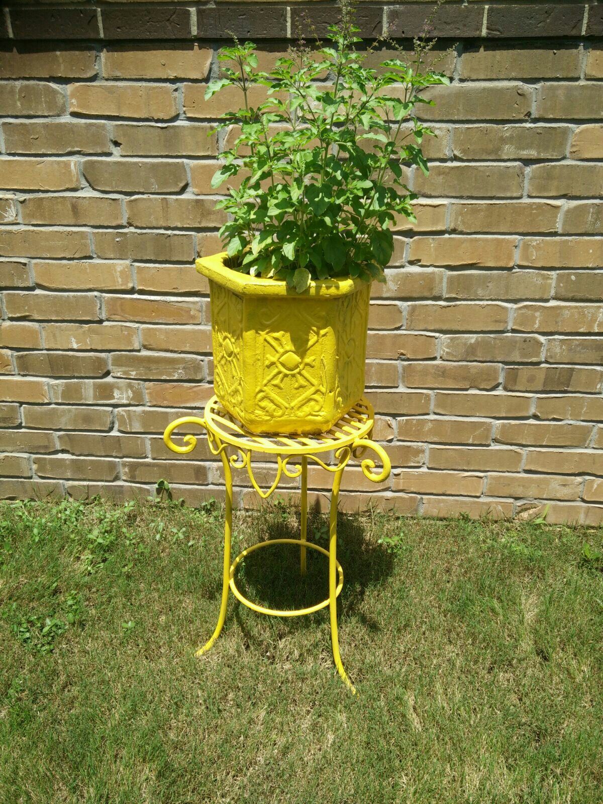 tulsi madam concrete pot from home depot and plant stand on home depot paint sale id=14660