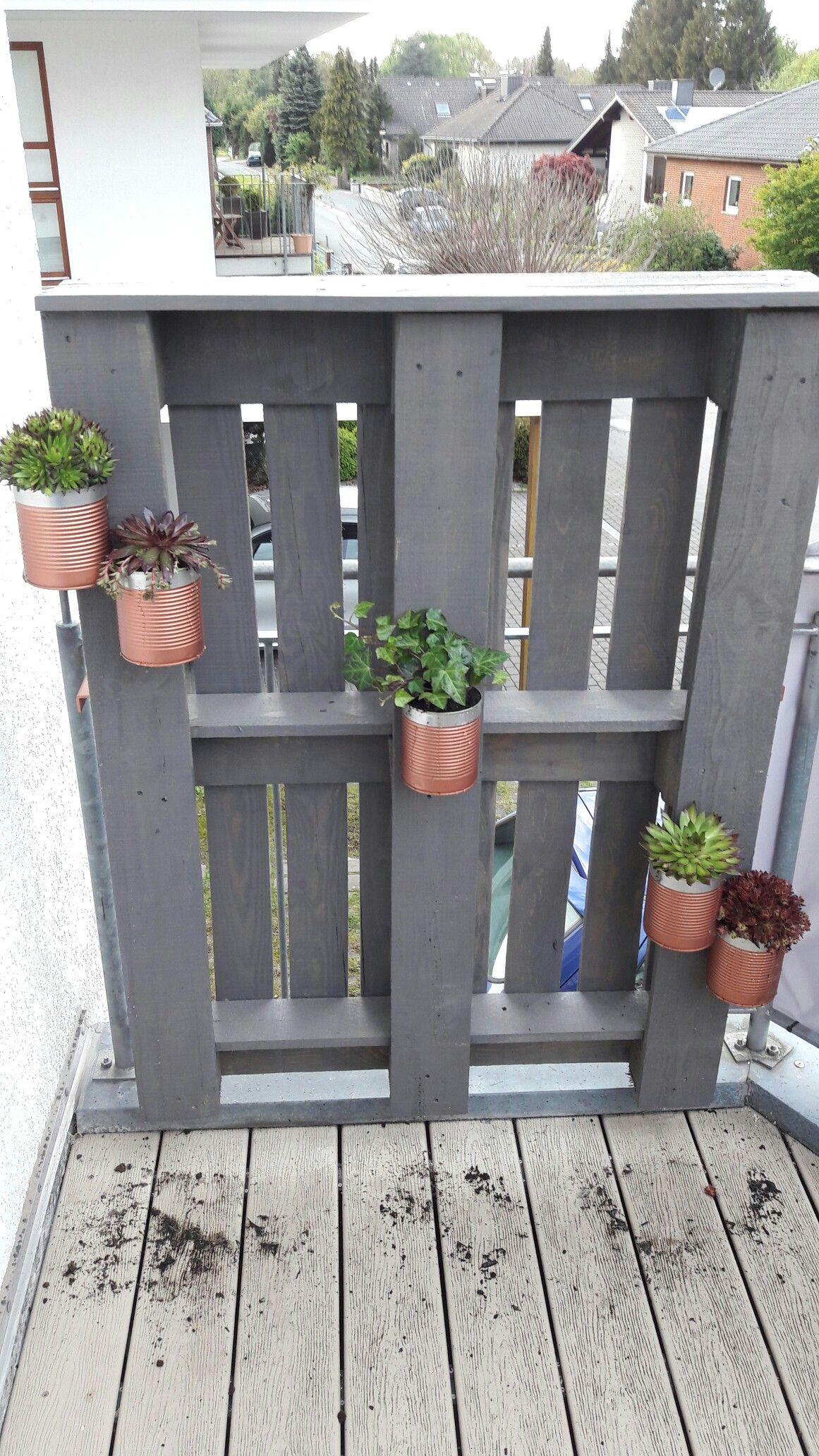 palette - ravioli dose - balkon - kupfer - dachwurz - hauswurz, Garten und erstellen