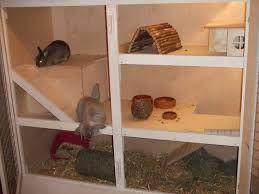 Kaninchenstall Bauanleitung Google Suche Kaninchengehege Hasen Kafig Kaninchen