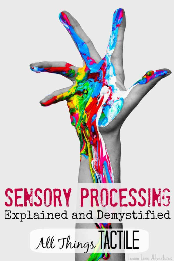 Talking Sense What Sensory Processing >> Tactile Input: Sensory Processing Explained | Sensory Processing 101 | Sensory processing ...