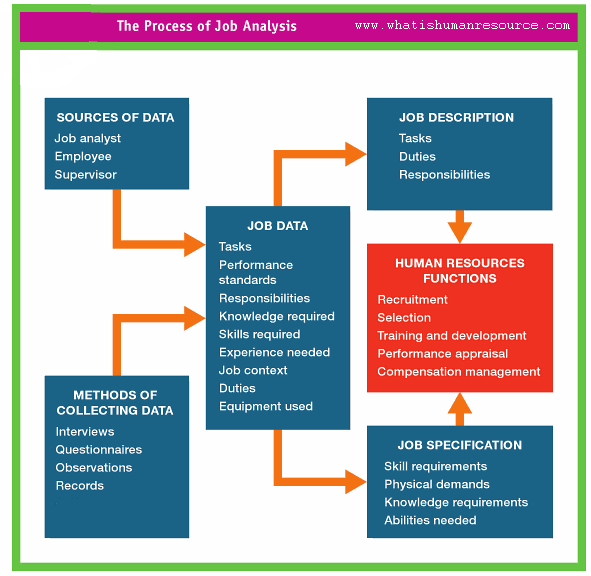 Job Analysis What Is Human Resource Job Analysis Human Resources Job Specification