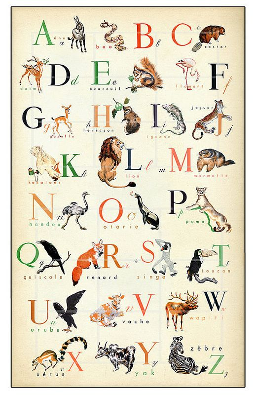 French Animal Alphabet Poster Alphabet Print French Alphabet Animal Alphabet