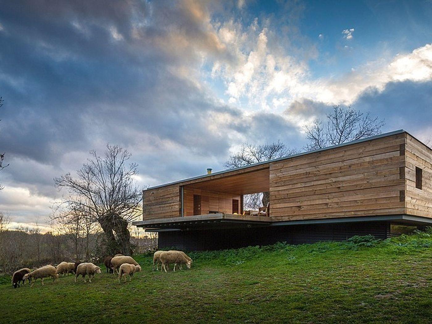 Modern Grazing Modern House