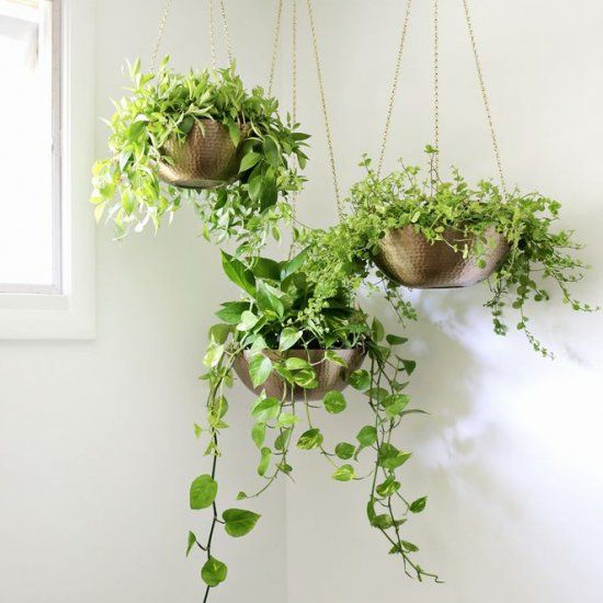 Make Cute Hanging Planters Out Of Decorative Bowls!
